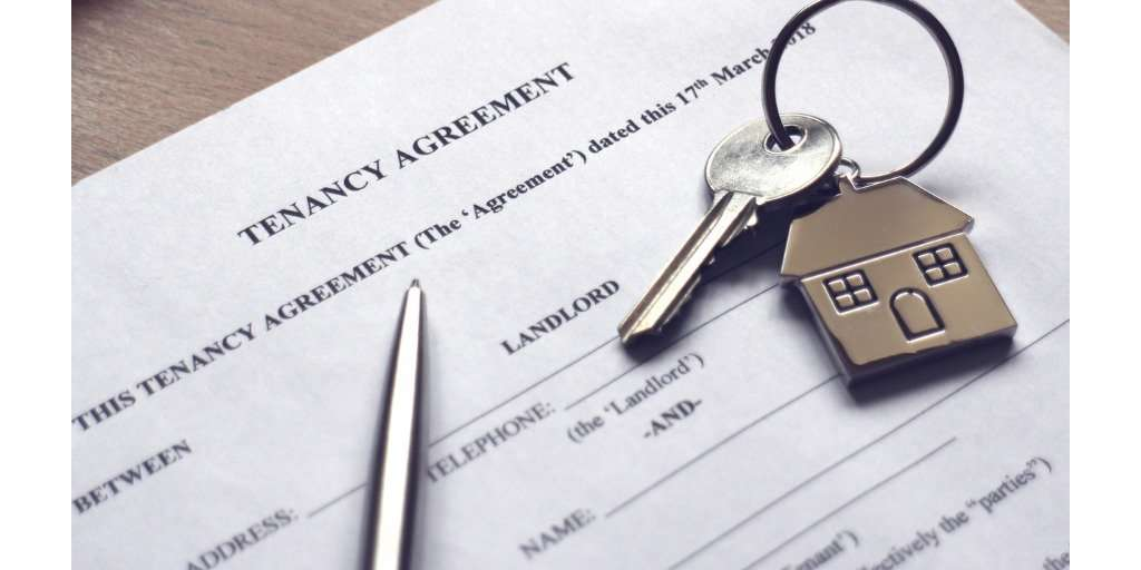How To Make Tenant Background Checks More Useful Trudiligence