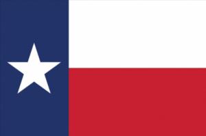 Texas Employment Background Checks